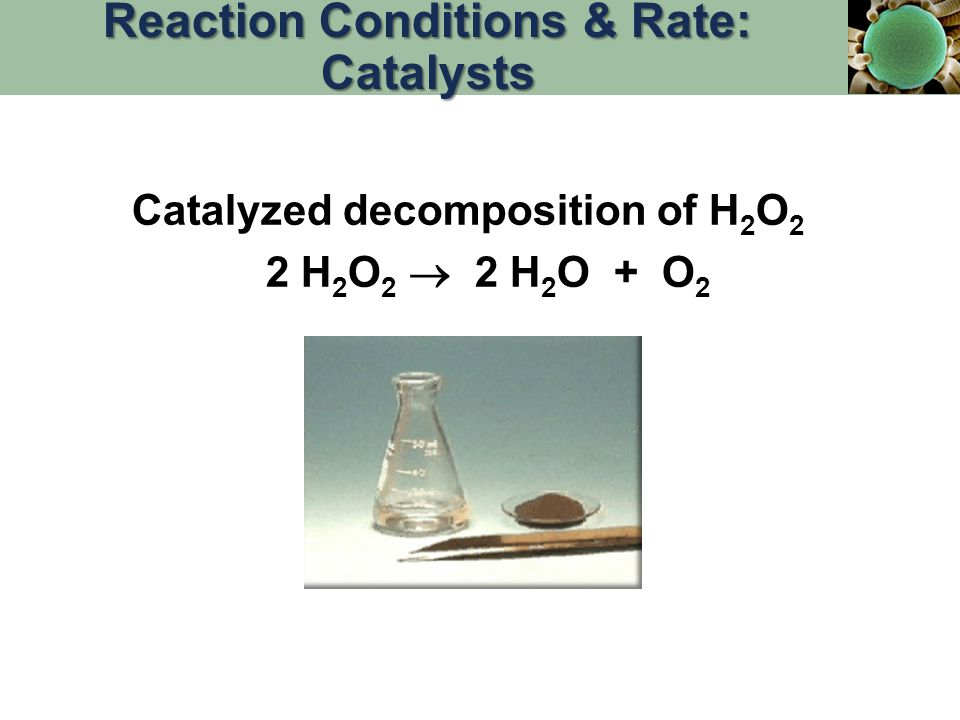 Reaction Conditions & Rate: Catalysts
