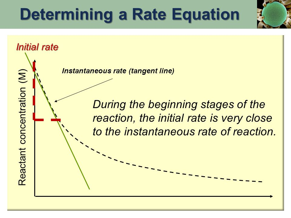 the determination of a rate equation coursework