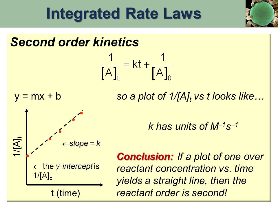Integrated Rate Laws Second order kinetics y = mx + b