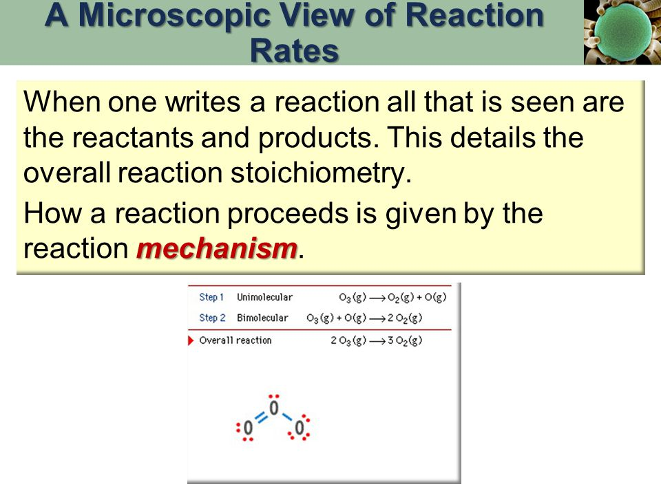 A Microscopic View of Reaction Rates