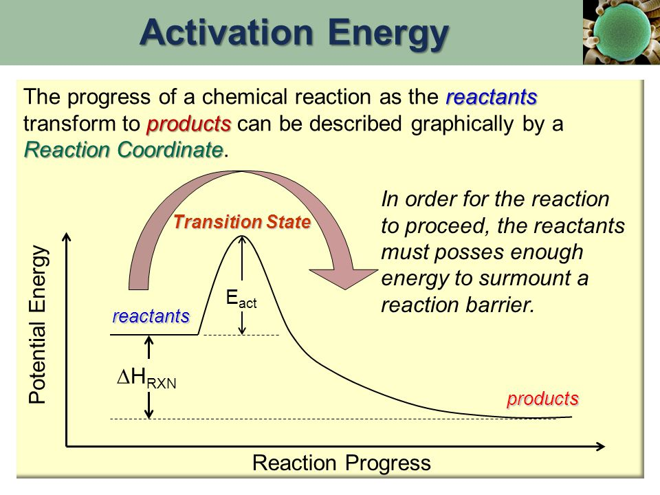 Activation Energy The progress of a chemical reaction as the reactants transform to products can be described graphically by a Reaction Coordinate.