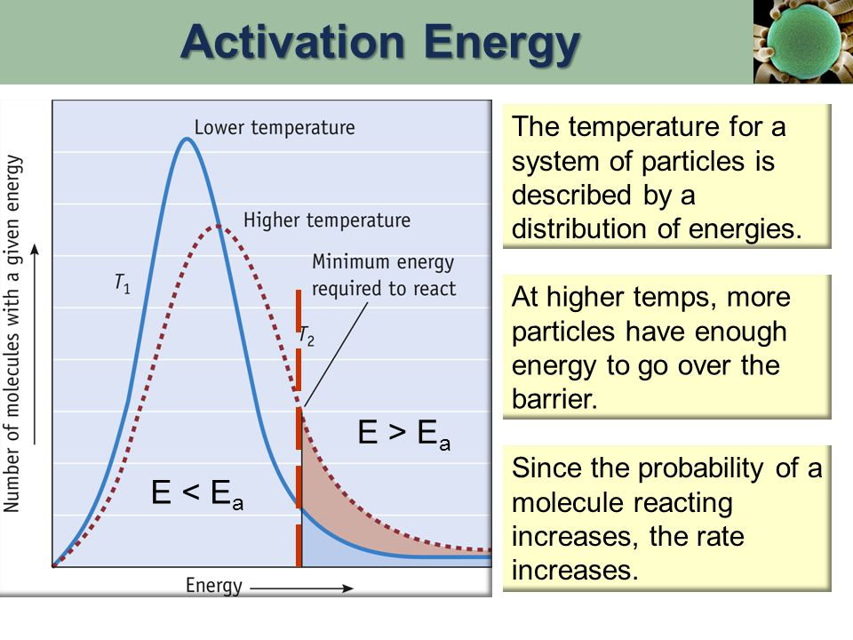 Activation Energy E > Ea E < Ea