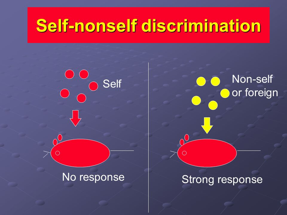 Self-nonself discrimination