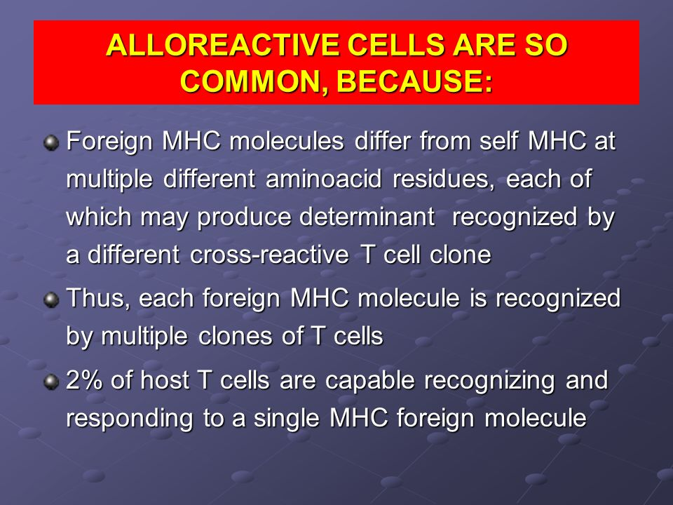 ALLOREACTIVE CELLS ARE SO COMMON, BECAUSE: