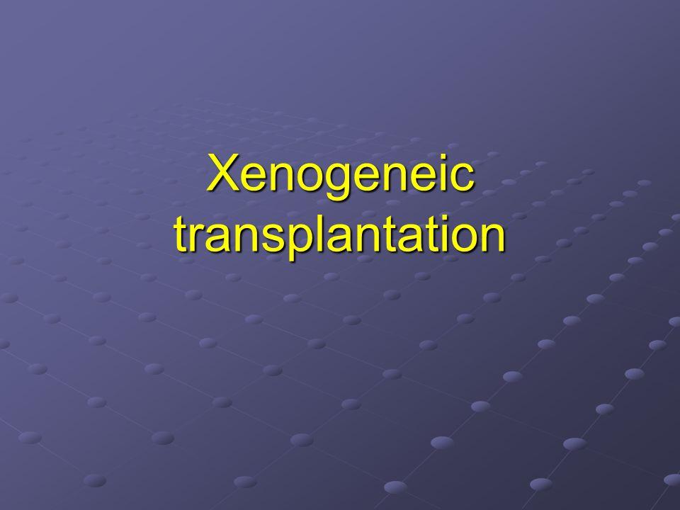 Xenogeneic transplantation