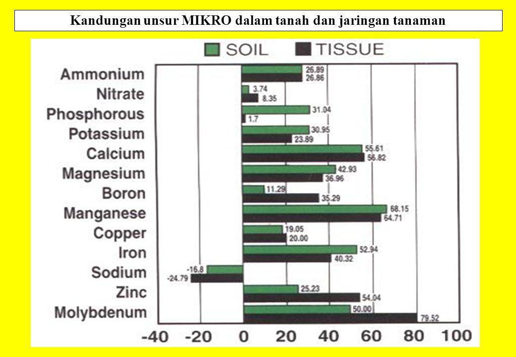 Kandungan unsur MIKRO dalam tanah dan jaringan tanaman