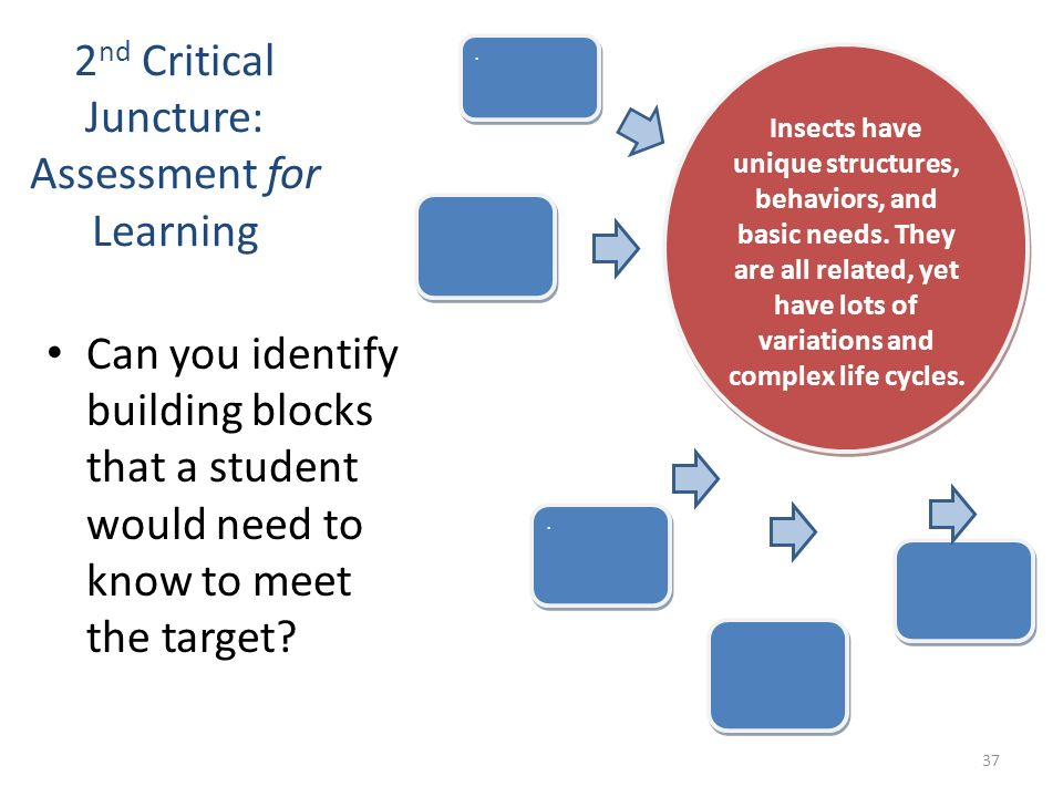 2nd Critical Juncture: Assessment for Learning