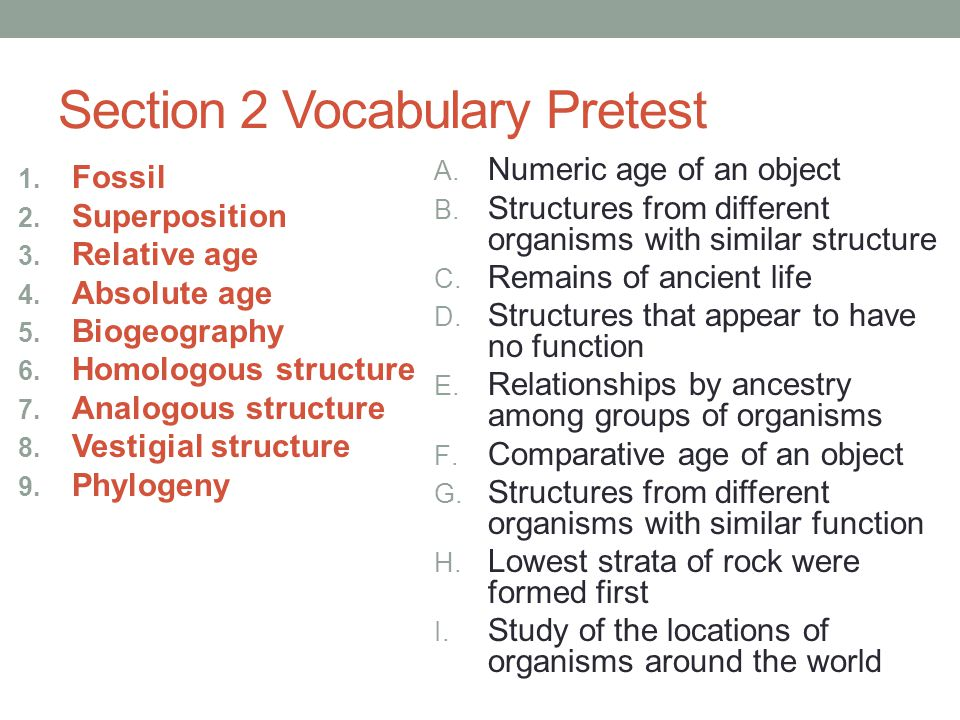 Section 2 Vocabulary Pretest