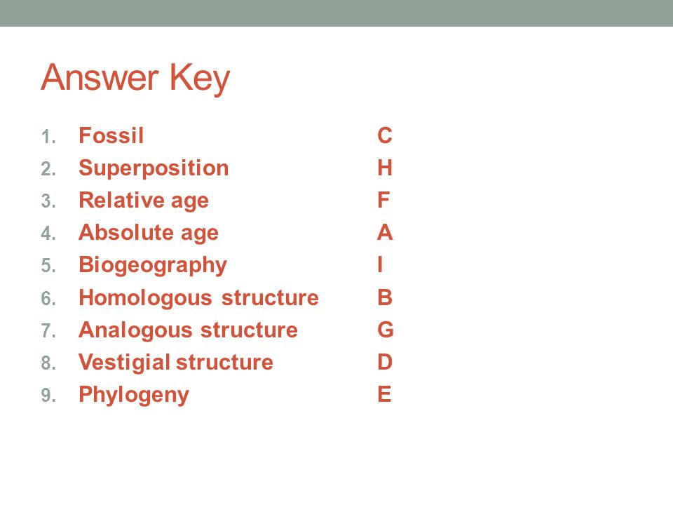 Answer Key Fossil C Superposition H Relative age F Absolute age A