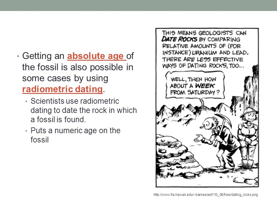 Getting an absolute age of the fossil is also possible in some cases by using radiometric dating.