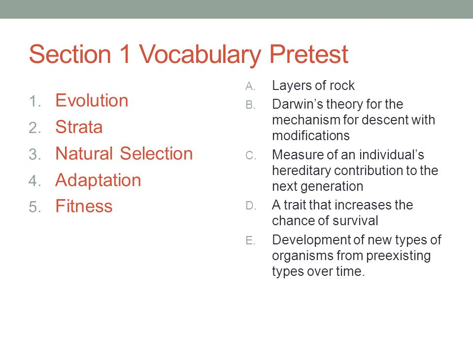 Section 1 Vocabulary Pretest