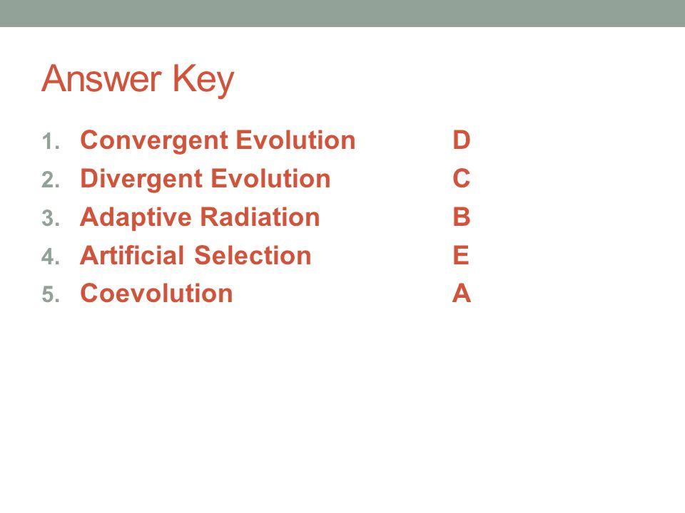 Answer Key Convergent Evolution D Divergent Evolution C