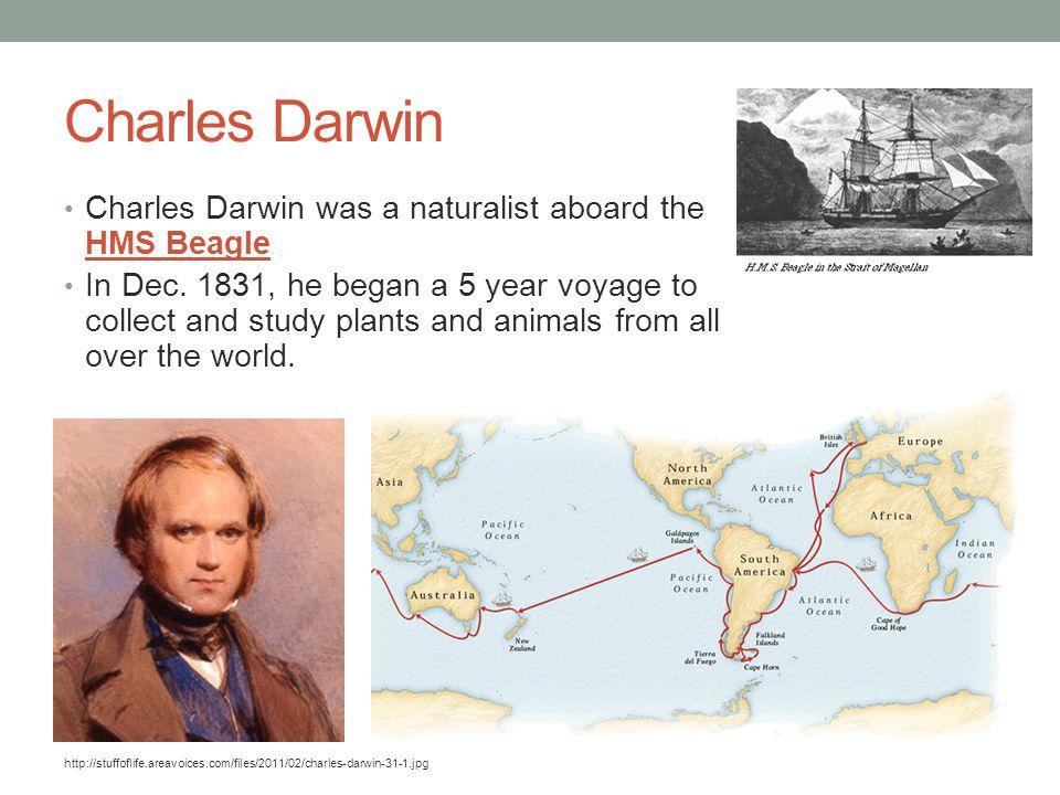 Charles Darwin Charles Darwin was a naturalist aboard the HMS Beagle