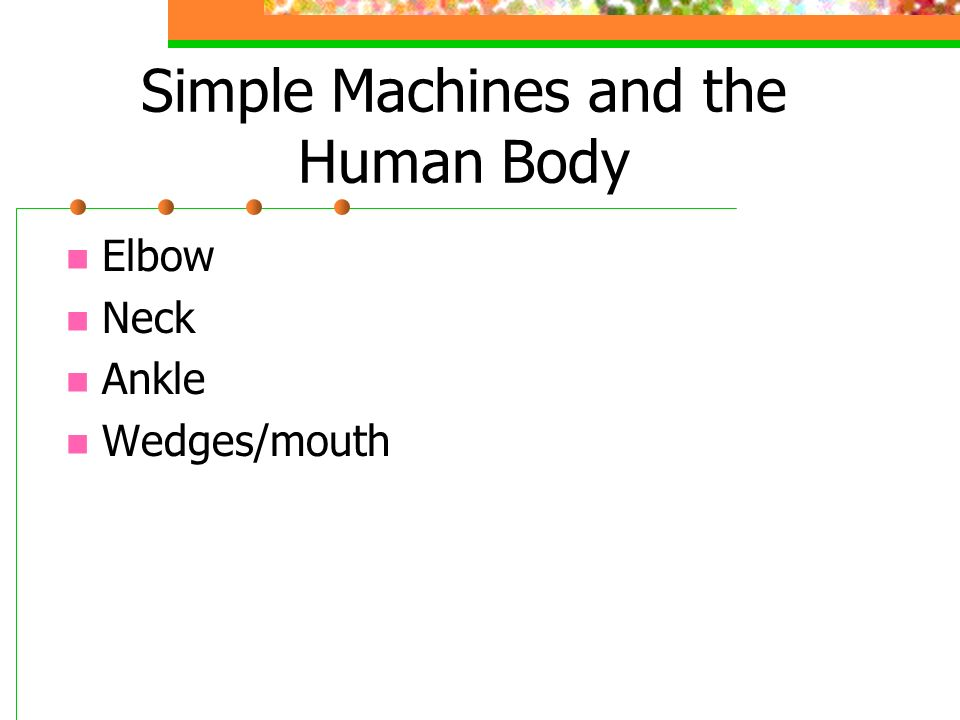 Simple Machines and the Human Body