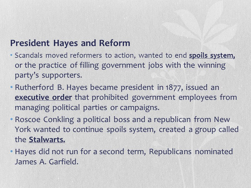 President Hayes and Reform
