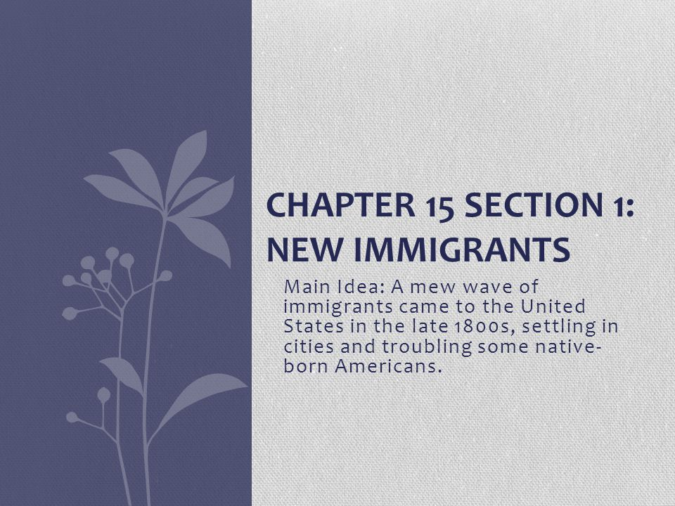 Chapter 15 Section 1: New Immigrants
