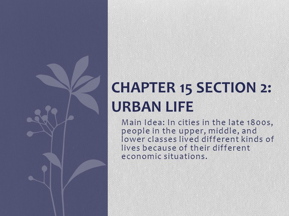 Chapter 15 Section 2: Urban Life
