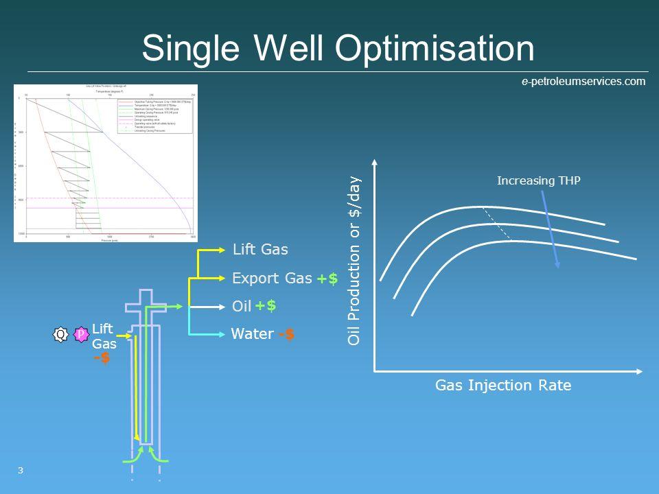 Single Well Optimisation