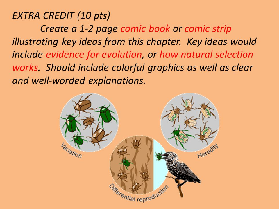 EXTRA CREDIT (10 pts) Create a 1-2 page comic book or comic strip illustrating key ideas from this chapter.