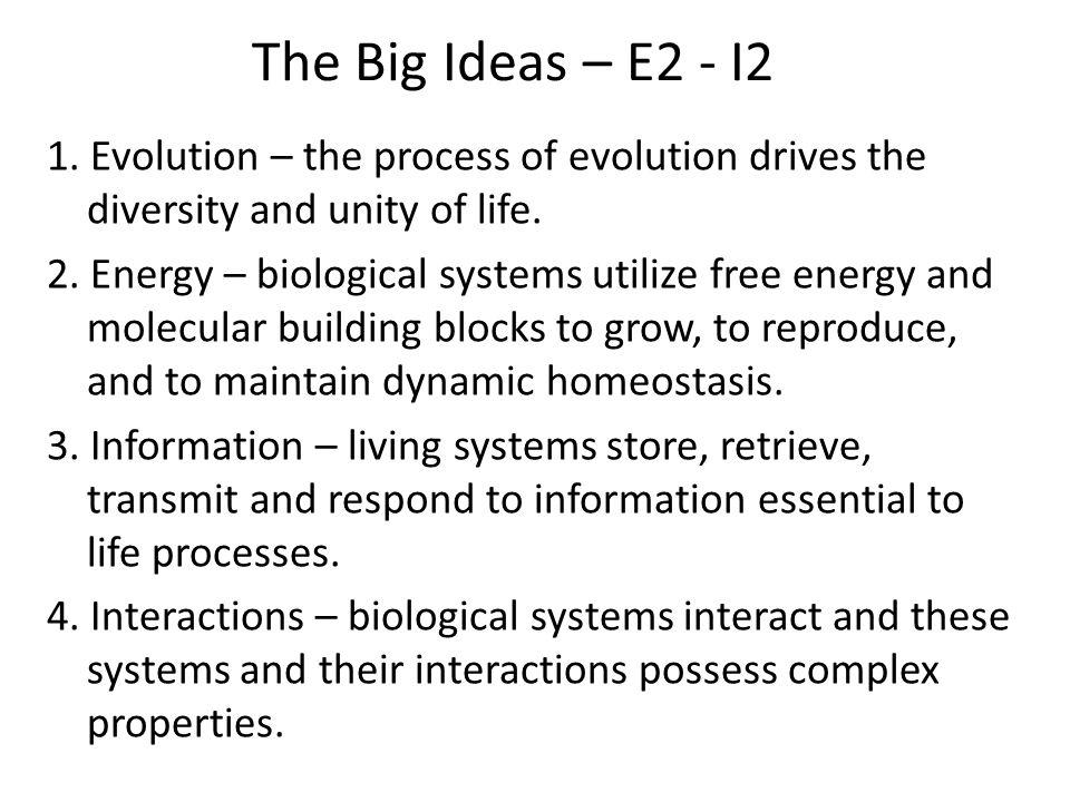 The Big Ideas – E2 - I2