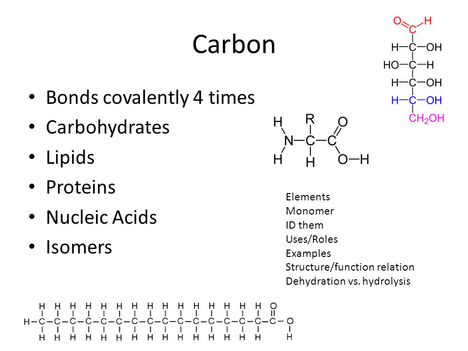 Carbon Bonds covalently 4 times Carbohydrates Lipids Proteins