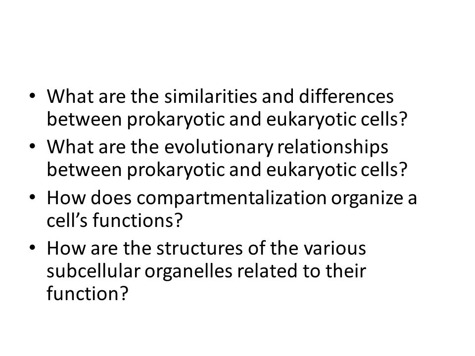 What are the similarities and differences between prokaryotic and eukaryotic cells