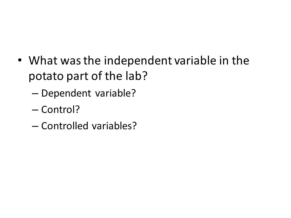 What was the independent variable in the potato part of the lab