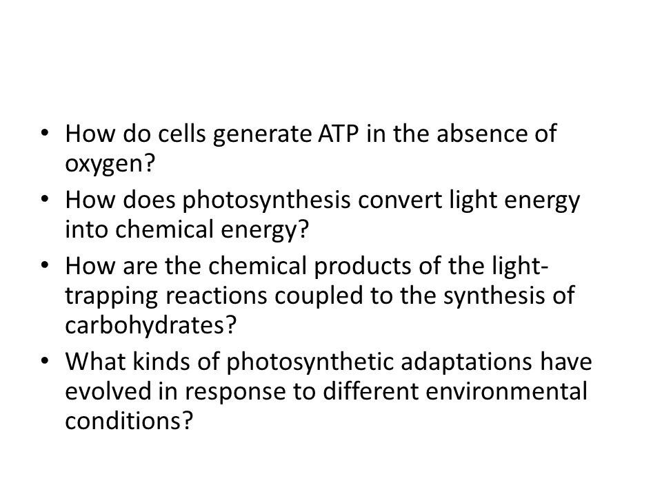 How do cells generate ATP in the absence of oxygen