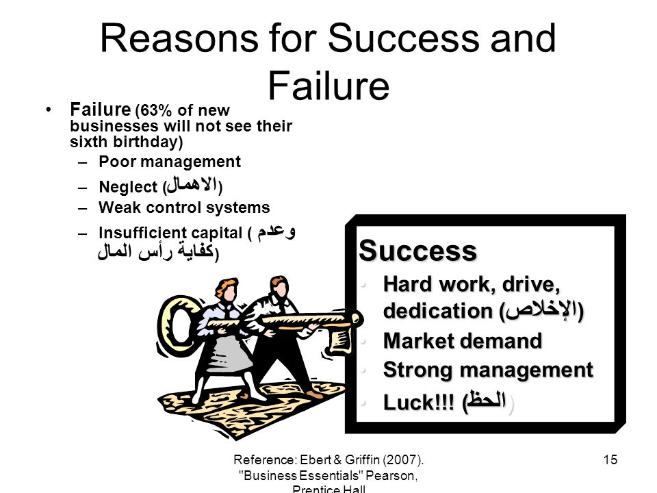Reasons for Success and Failure