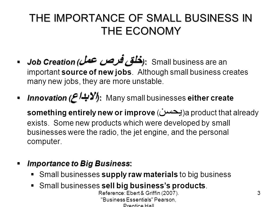 THE IMPORTANCE OF SMALL BUSINESS IN THE ECONOMY