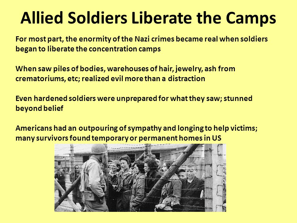 Allied Soldiers Liberate the Camps