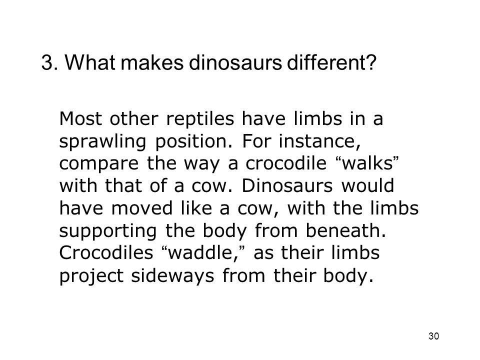 3. What makes dinosaurs different