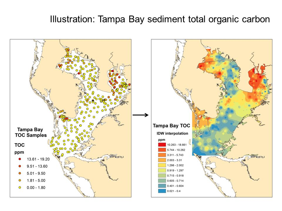 Illustration: Tampa Bay sediment total organic carbon