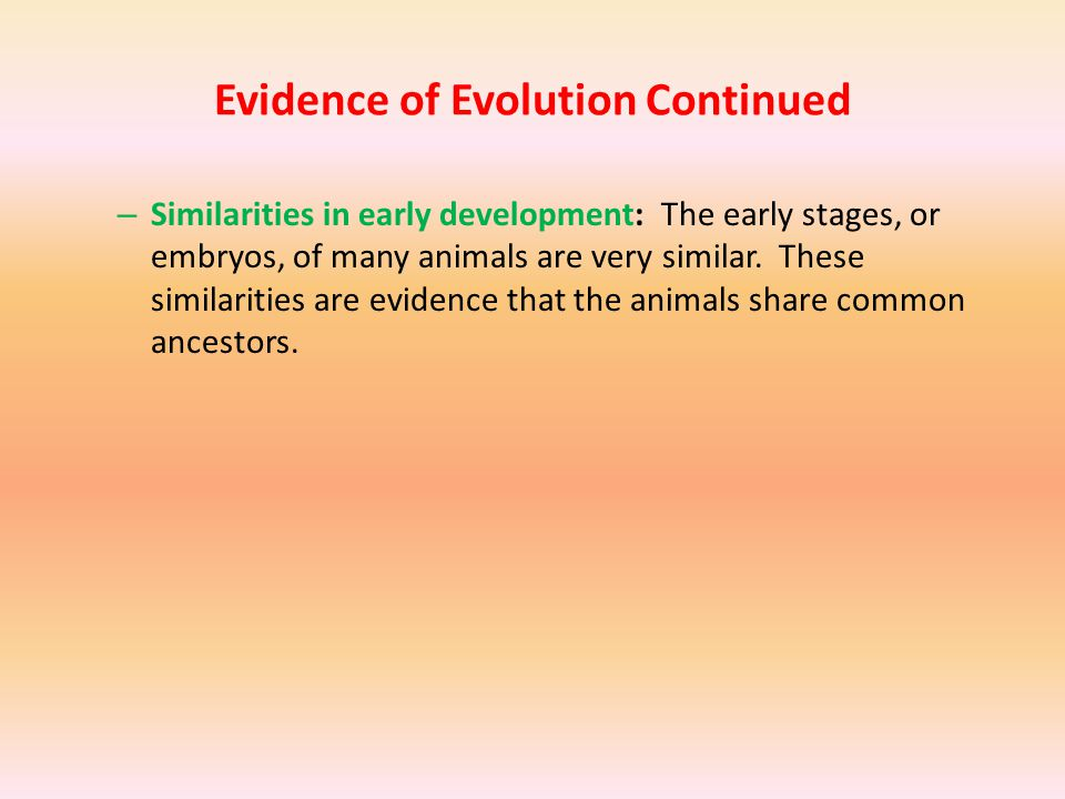 Evidence of Evolution Continued