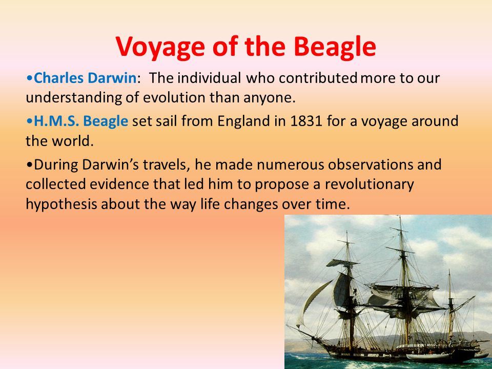 Voyage of the Beagle Charles Darwin: The individual who contributed more to our understanding of evolution than anyone.