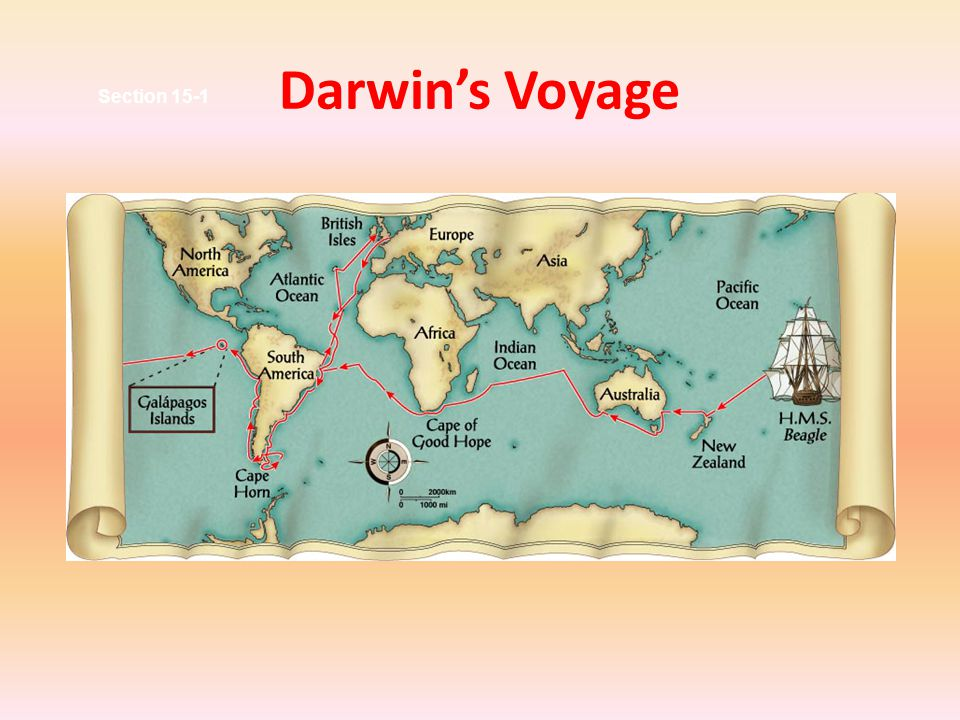 Darwin's Voyage Section 15-1