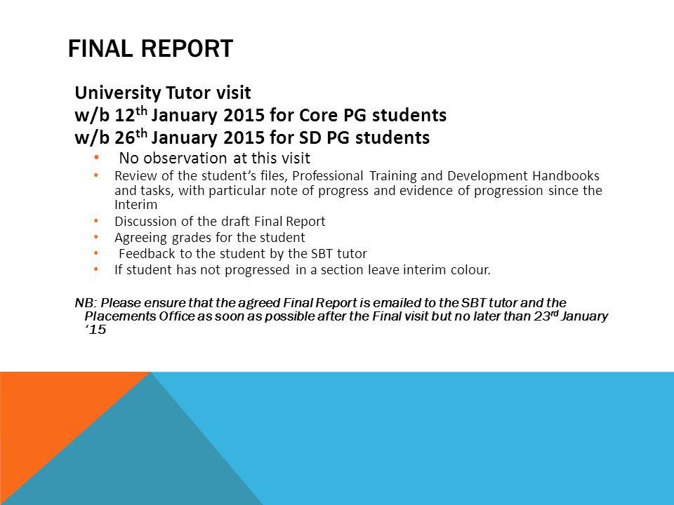 Final report University Tutor visit