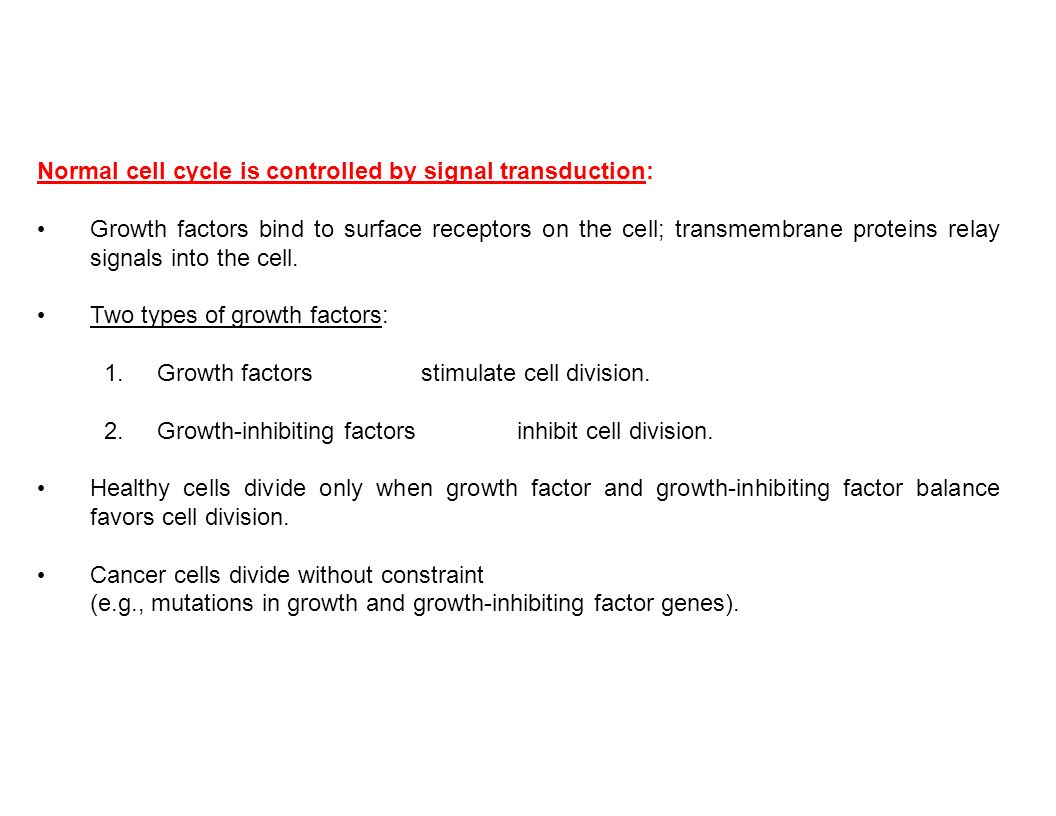 Normal cell cycle is controlled by signal transduction: