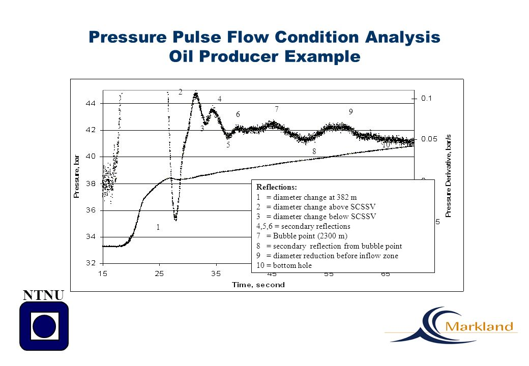 Pressure Pulse Flow Condition Analysis Oil Producer Example