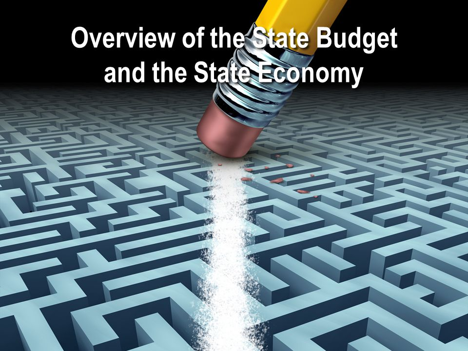 Overview of the State Budget and the State Economy