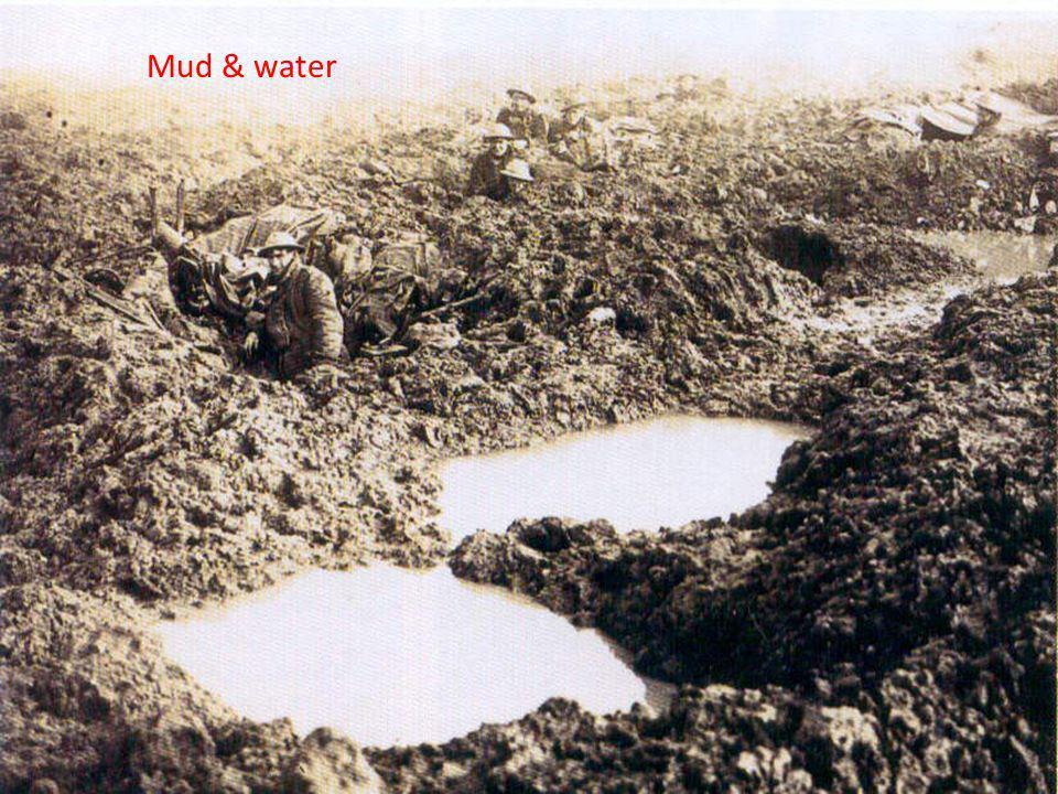 Mud & water 22