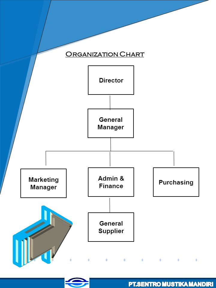 Organization Chart Director General Manager Admin & Finance