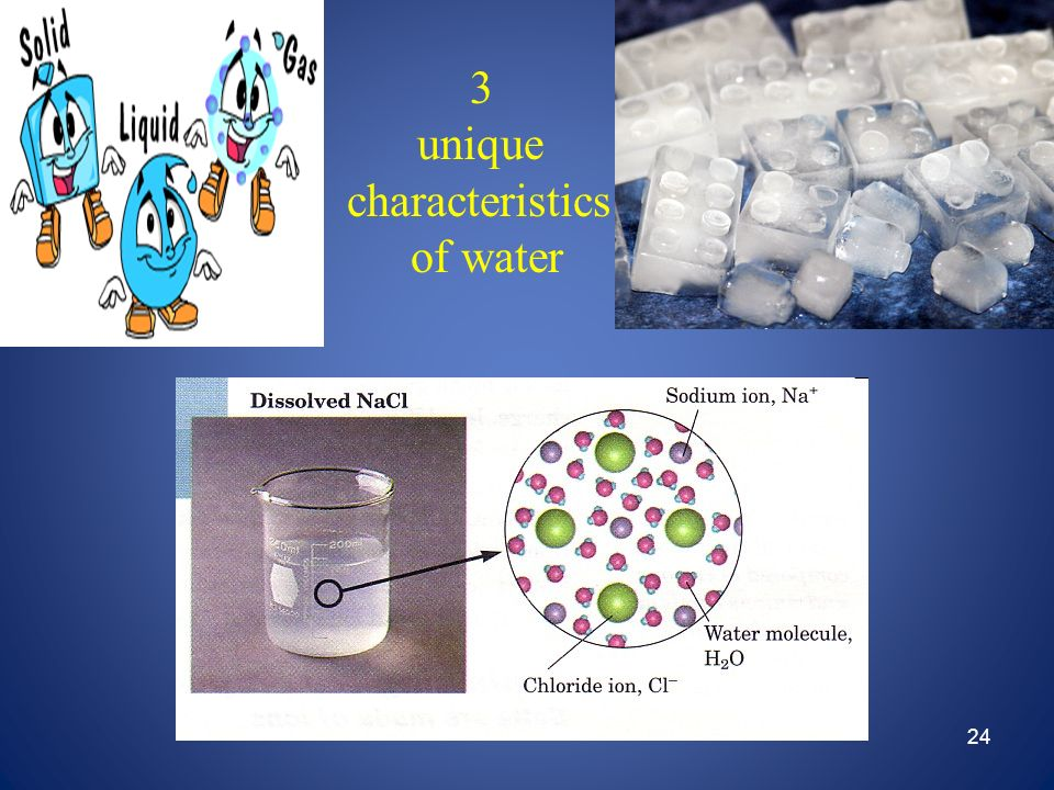 3 unique characteristics of water