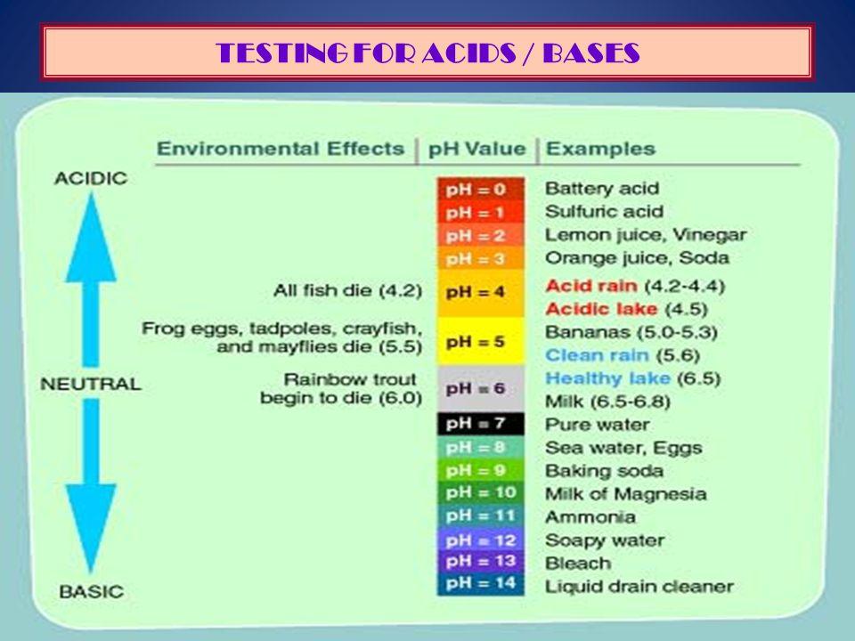 TESTING FOR ACIDS / BASES