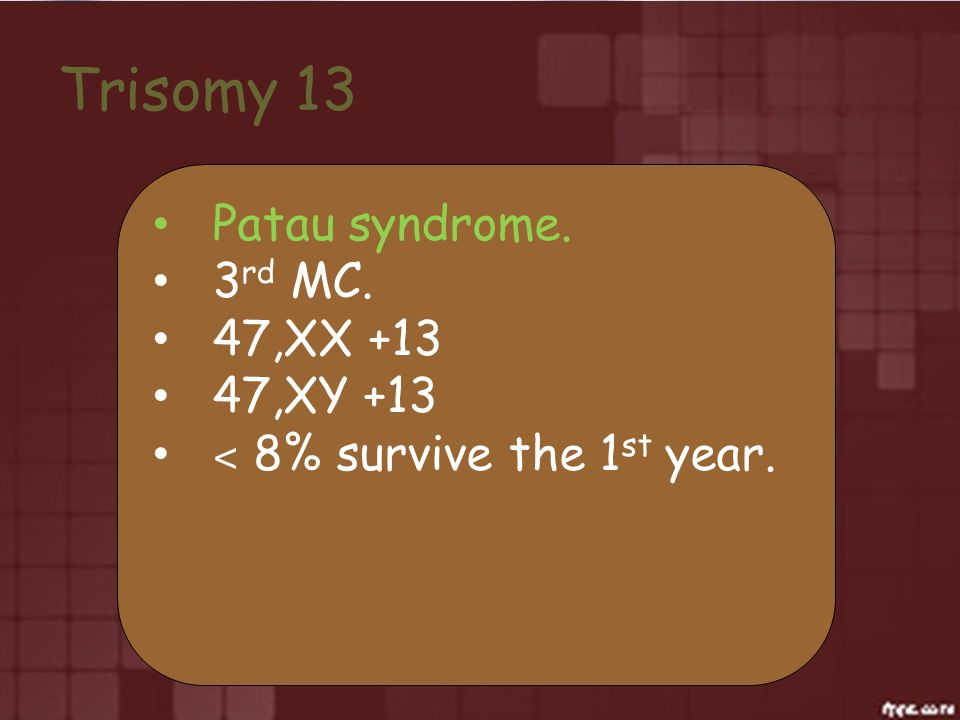 Trisomy 13 Patau syndrome. 3rd MC. 47,XX +13 47,XY +13
