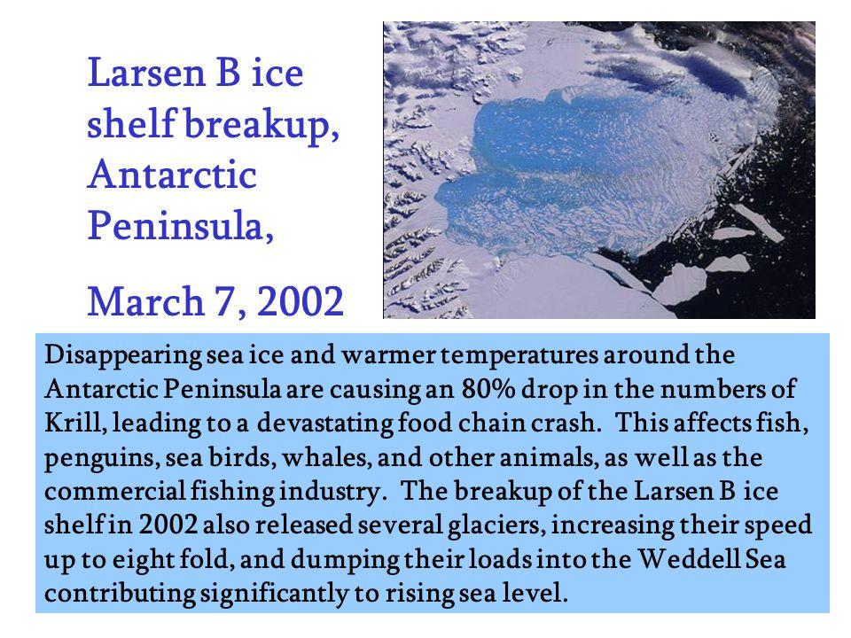 Larsen B ice shelf breakup, Antarctic Peninsula,
