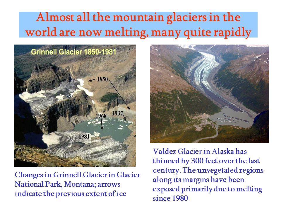 Almost all the mountain glaciers in the world are now melting, many quite rapidly