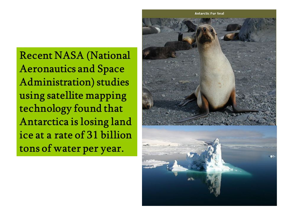 Recent NASA (National Aeronautics and Space Administration) studies using satellite mapping technology found that Antarctica is losing land ice at a rate of 31 billion tons of water per year.