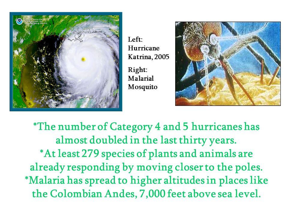 Left: Hurricane Katrina, 2005
