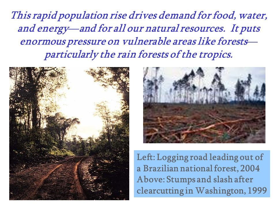 This rapid population rise drives demand for food, water, and energy—and for all our natural resources. It puts enormous pressure on vulnerable areas like forests—particularly the rain forests of the tropics.